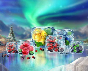 winterberries slot
